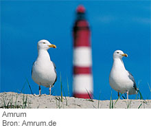 Amrum. Bron: Amrum.de
