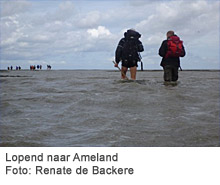 Lopend naar Ameland. Foto: Renate de Backere