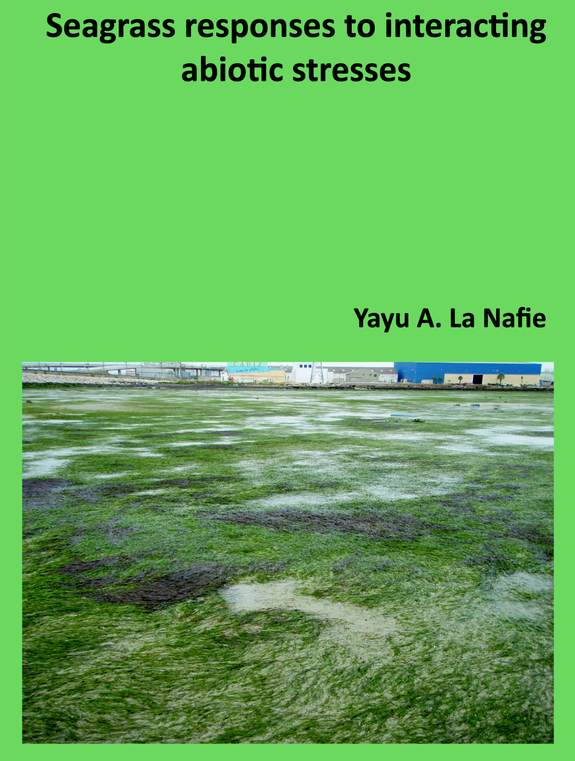 Cover thesis Yayu La Nafie