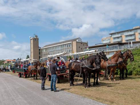 [Translate to english:] Excursie tijdens ISISA 2018 conferentie op Terschelling
