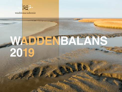 Cover Waddenbalans 2019