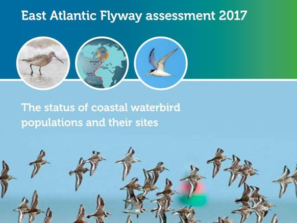 Cover rapport East Atlantic Flyway assessment 2017