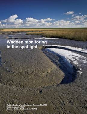 Cover Wadden monitoring in the sportlight