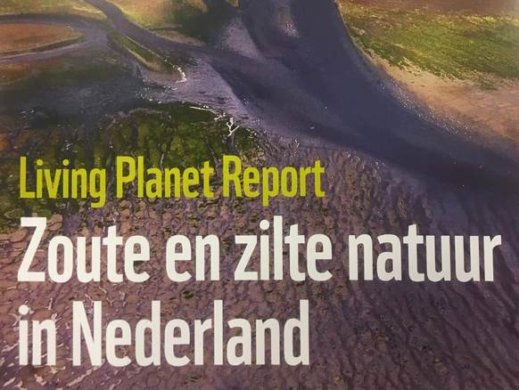 Cover Living Planet Report