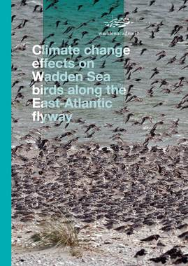 Cover rapport Climate change effects on Wadden Sea birds along the East Atlantic flyway