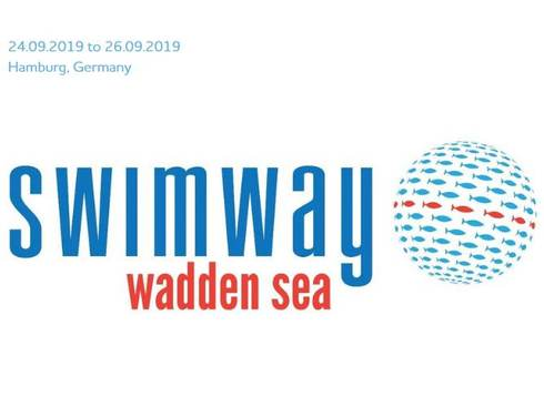 Swimway conference report available