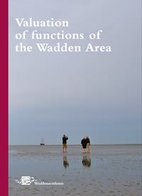 Cover valuation of functions